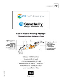 GULF OF MEXICO PROPERTIES