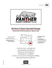 NORTHERN DJ BASIN PROJECT (Panther)