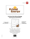 Primal Energy - SE New Mexico