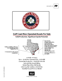 South Texas NonOperated Pkg (Burnett)