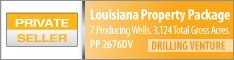 LOUISIANA PROPERTY PACKAGE